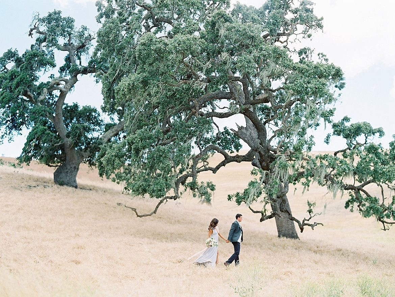 California Hills Engagement