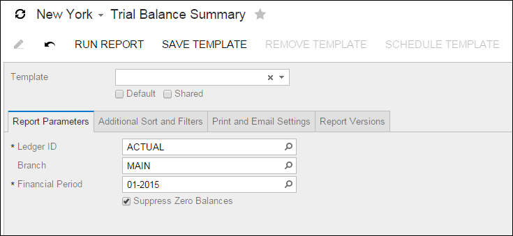 Acumatica Trial Balance Summary Report