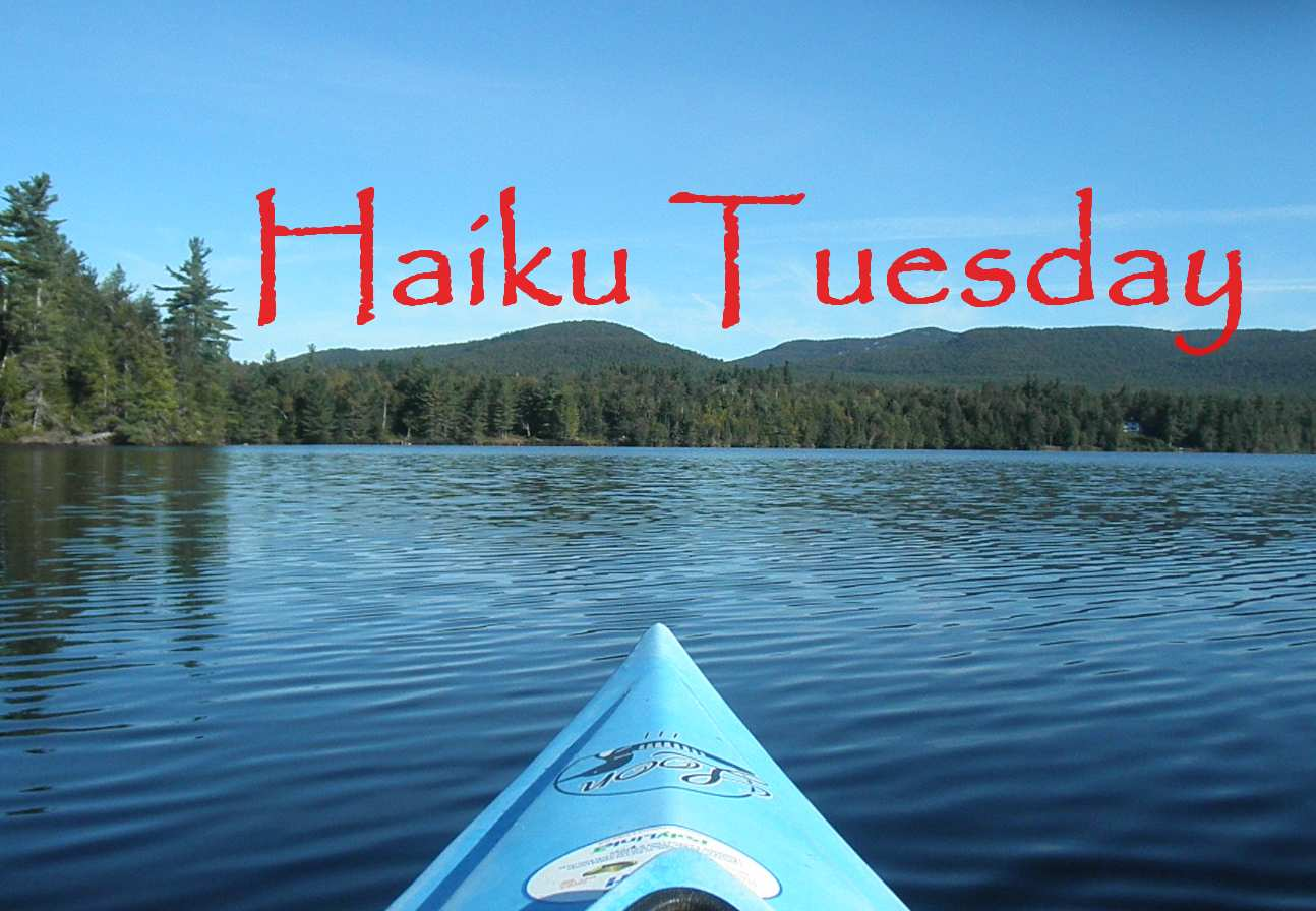 Haiku Tuesday (August 27, 2013)