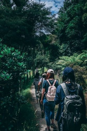An image of a group of hikers on a trail in the wilderness