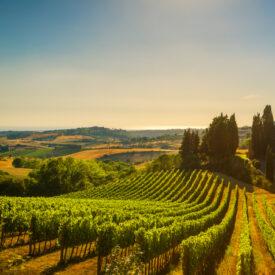 right Italy