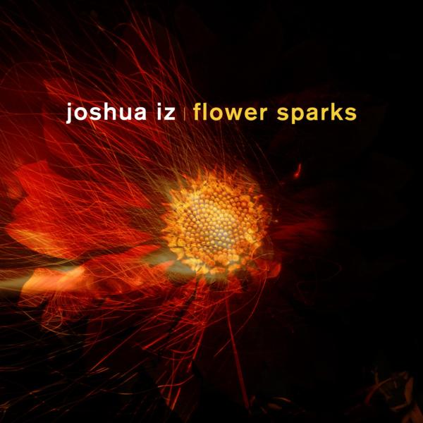 VIZ002 Joshua Iz - Flower Sparks