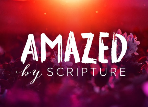 Amazed by Scripture