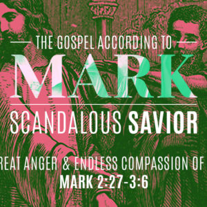 The Great Anger and Endless Compassion of Jesus (November 18)