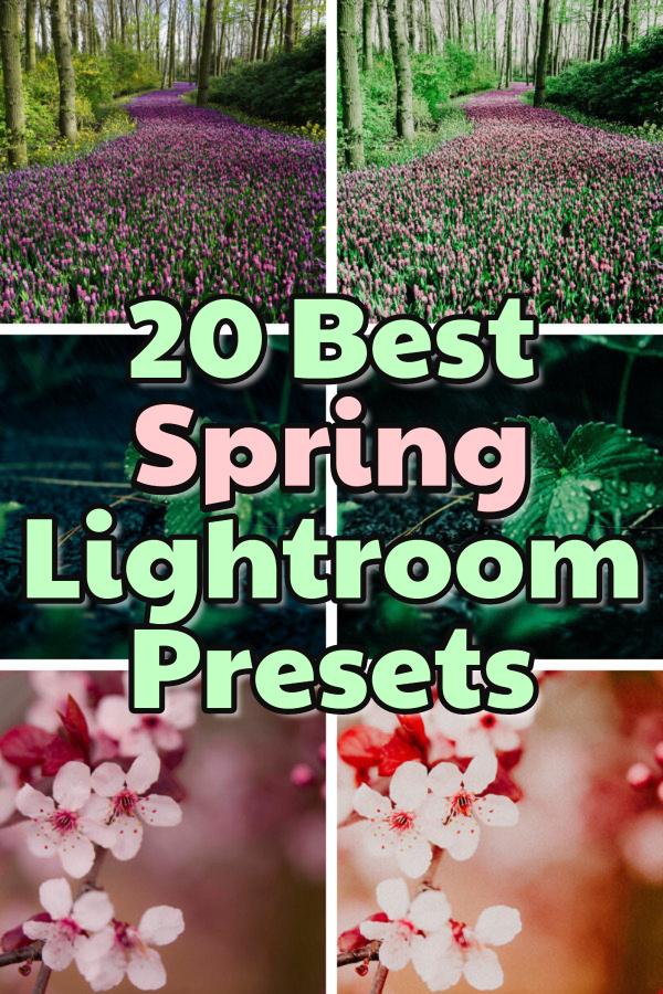 20 best spring Lightroom presets for mobile and desktop