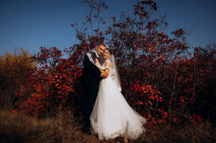 Top wedding photography pricing guide templates easily edit in your information save to PDF, PSD, etc.