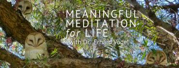 Meaningful Mediation for Life with Dr. Erhard Vogel | Web Talk Radio