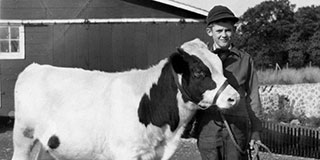 Jerry Apps A Farm Story Jerry with Cow