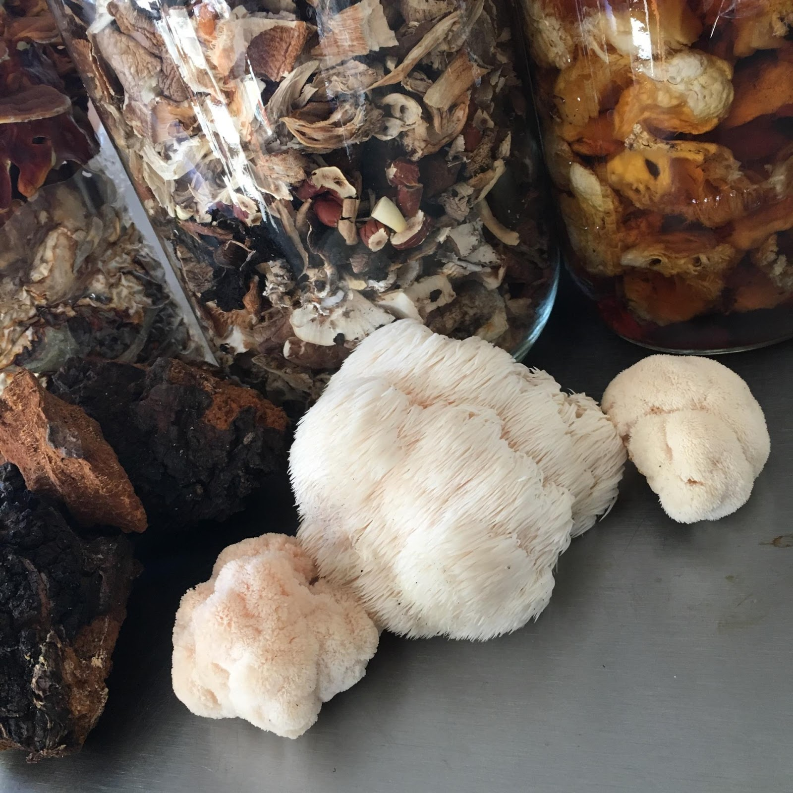 Different varieties of mushrooms are dried and preserved