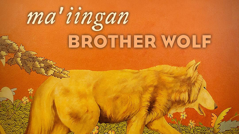 Title art for the documentary Ma'iingan: Brother Wolf.