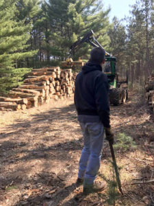Man standing near tractor and stacked logs