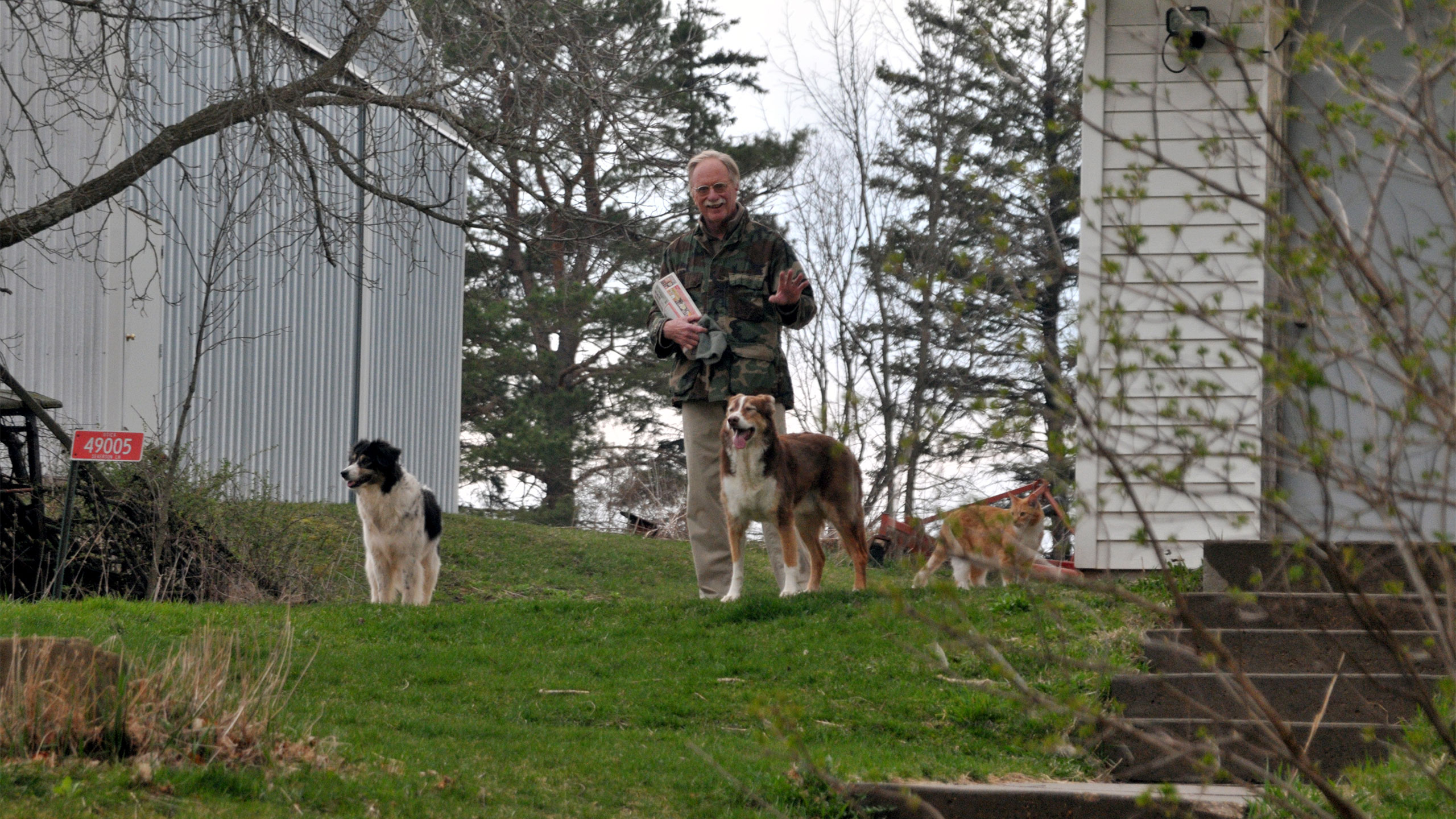 Man standing outside with 3 dogs