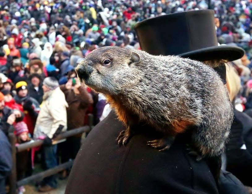 Groundhog Day 4