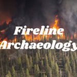 The Role of Archaeology in Wildfire and Disaster Response