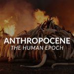The Anthropocene: Pushing the Limits of the Earth
