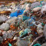 New Art Exhibition Investigates Marine Debris