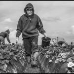 """Undocumented but """"essential"""" workers excluded from CARES Act"""