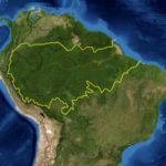 Amazon Rain Forest under threat