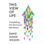 Taking Evolutionary Theory to a World View