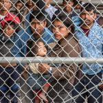 "What can YOU do about the border ""concentration camps""?"