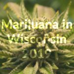 The state of marijuana in Wisconsin in 2019