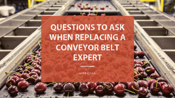 Replacing a conveyor belt. questions to ask the experts