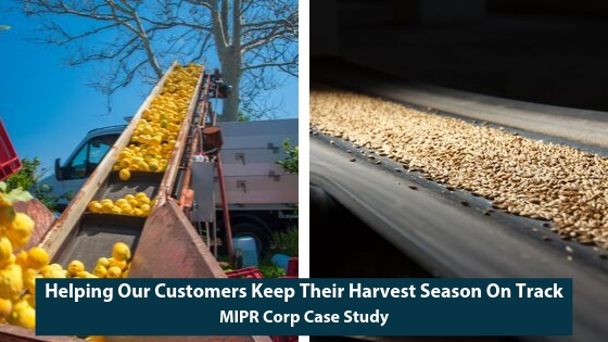 Harvest Seasons and Conveyor Belts Being Put to Use