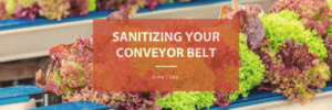 Keeping Conveyor Belts Clean & Sanitary
